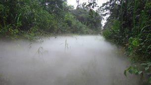 2014-Sept-Kalaba