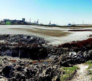 Smaltimento rifiuti in provincia di Ravenna