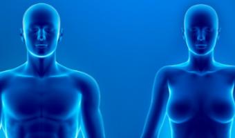 The-Italian-Journal-of-Gender-Specific-Medicine-640x229
