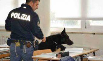 Polizia blitz con cani