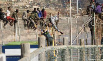 Refugees-N-Africa