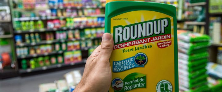 """This picture taken on June 15, 2015 shows a bottle of Monsanto's 'Roundup' pesticide in a gardening store in Lille. French Ecology Minister Segolene Royal announced on June 14, 2015 a ban on the sale of American biotechnology giant Monsanto's popular weedkiller from garden centres, which the UN has warned may be carcinogenic. The active ingredient in Roundup, glyphosate, was in March classified as """"probably carcinogenic to humans"""" by the UN's International Agency for Research on Cancer (IARC). AFP PHOTO / PHILIPPE HUGUEN"""