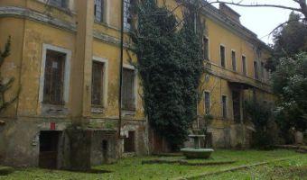 manicomio-roma-675-675x275