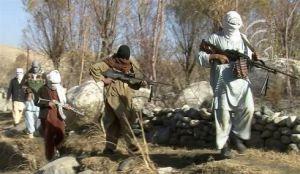 talib in movimento