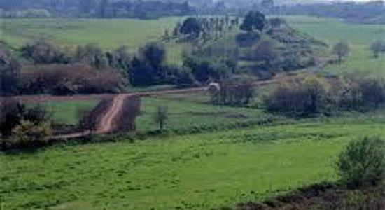 [fonte: http://contropiano.org/news/ambiente-news/2018/12/11/roma-una-green-city-dalle-potenzialita-straordinarie-ma-non-utilizzate-0110435]