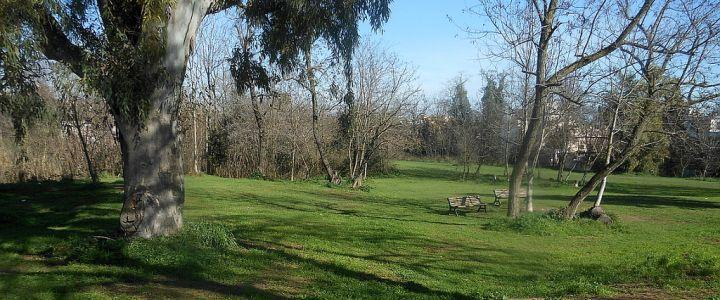 [Il parco di Aguzzano: un conflitto socio-ambientale]